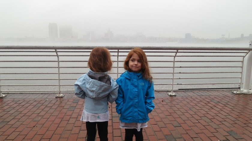 A view of foggy Philadelphia over the Delaware River