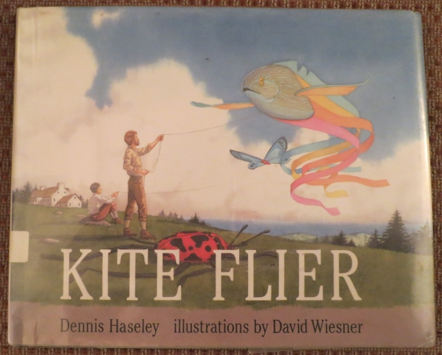 Kite Flyer Cover