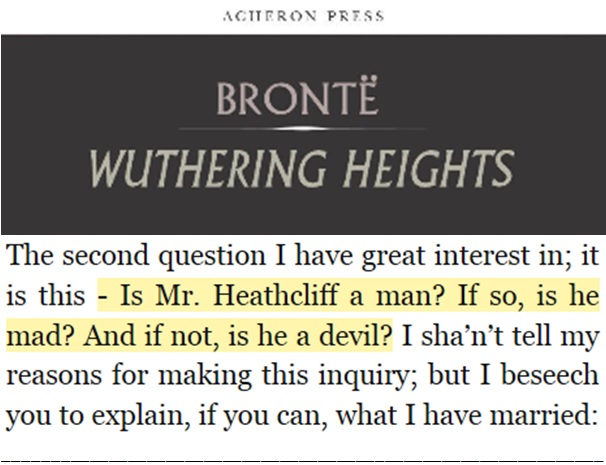 heathcliff a man or a devil part ii of the wuthering heights  man or devil quote