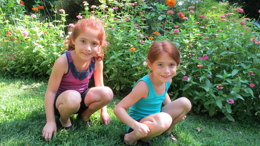 Gardening Twins_Their Zinnia Bed