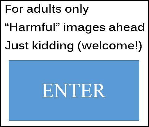 Enter_A Rudimentary Haiku_by AMB