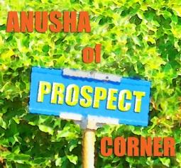 Anusha of Prospect Corner_WIP